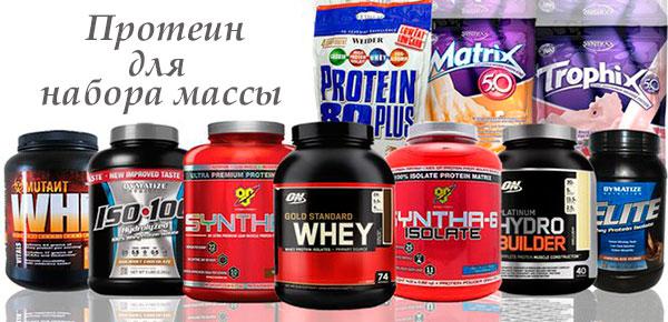 Протеины для набора мышечной массы в домашних условиях 255